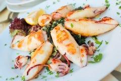 Macro Close up of grilled calamari Royalty Free Stock Photo
