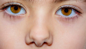Macro close up of a little girls brown eyes Stock Photos