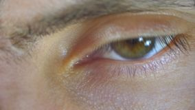Macro Close-up Male Human Eye Blinking. Young man is opening and closing his eye. Brown eye with a green tint. The eyeball, cornea, and pupil moves and looks stock video footage