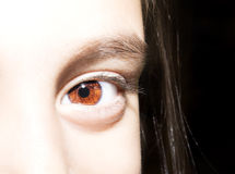 Macro Close up portrait of young girls brown eyes. royalty free stock photos