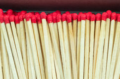 Macro close up of Red headed matches standing upright Stock Image