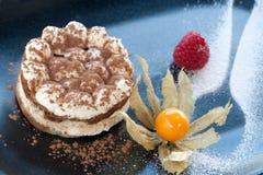 Macro close up of Tiramisu coffee dessert. Royalty Free Stock Photos