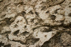 Macro close up view of Colonial stucco wall in Asia with deep fi Royalty Free Stock Photos