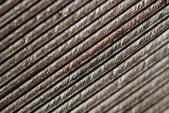 Macro closeup of a Bird Feather. Macro closeup of a single brown bird feather on a white backdrop Stock Photos