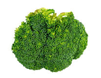 Macro closeup of broccoli floret isolated on white Stock Image
