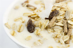 Macro closeup of delicious low-fat yogurt with oats, muesli Royalty Free Stock Images
