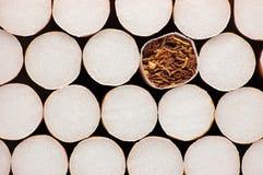 Macro Closeup Filter Cigarettes Stock Photography