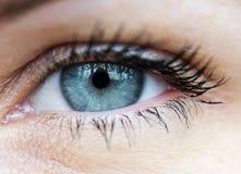 Macro closeup of human blue eye Stock Photos