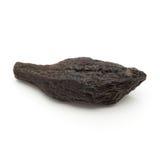 Macro closeup of a Organic Chebulic Myrobalan. Royalty Free Stock Photo