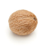 Macro closeup of Organic Nutmeg Seed. Stock Image