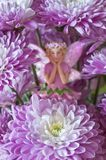 Flower fairy hiding behind clusters of aster flowers. Macro closeup of purple aster flowers with fairy hiding in background Royalty Free Stock Photo