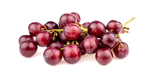 Macro closeup of red grapes on vine isolated. Detailed studio shot Royalty Free Stock Image