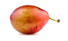 Macro closeup of sugar plum Stock Photography