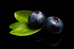 Macro closeup view blueberries leaves isolated black Stock Photo