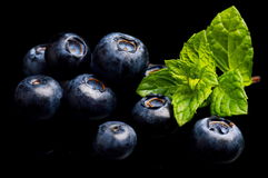Macro closeup view blueberries leaves isolated black Stock Image