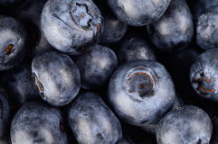 Macro closeup view group fresh blueberries background. Photo close-up view of fresh blueberries background Royalty Free Stock Images