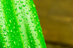 Macro closeup of Waterdrops on a Leaf Stock Photography
