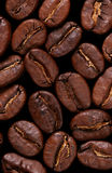 Macro coffebeans background. Extreme close-up of coffee beans isolated on black Stock Photography