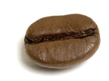 Macro Coffee bean. Isolated macro shot of single coffee bean Stock Image