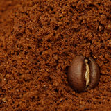Macro coffee bean, background Royalty Free Stock Image