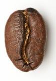 Macro of coffee bean Royalty Free Stock Photos