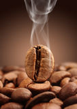 Macro coffee bean with smoke on brown background Royalty Free Stock Photos