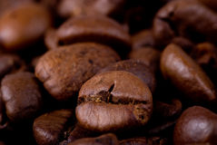 Macro coffee beans Royalty Free Stock Images