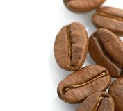 Macro of coffee beans  on white background Royalty Free Stock Photography