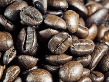 Macro coffee Stock Image