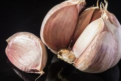 Macro collection, french pink garlic head close up stock photography