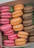 Macro colorida de los macarrones Fotos de archivo libres de regalías
