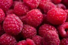 Macro colpo dei lamponi maturi freschi, fondo della frutta di estate Immagine Stock Libera da Diritti