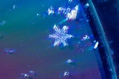Macro colpo del fiocco di neve reale a partire dall'inverno reale Fotografia Stock Libera da Diritti