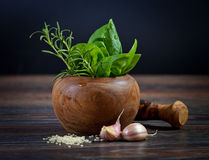 Macro composition of Italian cooking ingredients, garlic, rosema Stock Photos