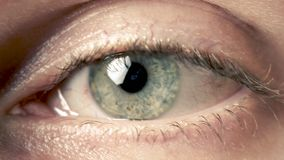 Macro of conjunctivitis red eye. Fear stock video footage