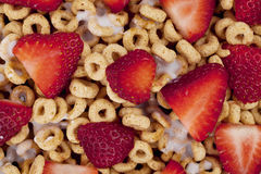 Macro corn flakes rings Royalty Free Stock Images