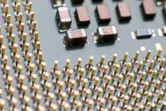 Macro CPU contacts Royalty Free Stock Photography
