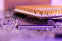 Macro cpu pins in blue diode light Royalty Free Stock Photo