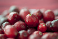 Macro Cranberries Royalty Free Stock Images