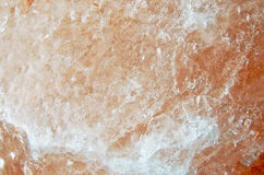 Macro cristallo rosa 2 Fotografia Stock
