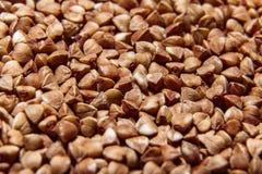 Macro cru do close up do trigo mourisco Imagem de Stock Royalty Free