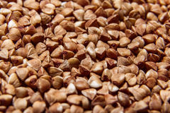Macro cruda del primo piano del grano saraceno Immagine Stock Libera da Diritti