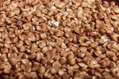 Macro cruda del primo piano del grano saraceno isolata Fotografia Stock