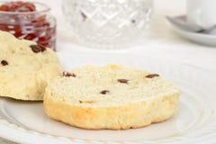 Macro cut scone with raisins Stock Images