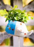 Macro cute colorful flowerpot with green leaves. Macro of cute colorful flowerpot with green leaves royalty free stock photos