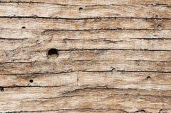 Macro détail de texture en bois Image stock