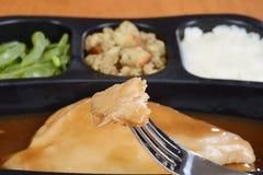 Macro dîner de TV de dinde Image stock