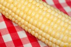 Macro d'épi de maïs Images stock