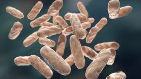 Macro d'infection bactérienne illustration de vecteur