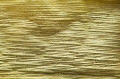 Macro da folha do cereal da queda Imagem de Stock
